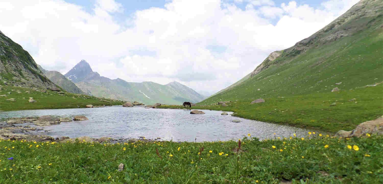 Basmai Lake